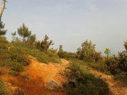 Sul sentiero color arancio