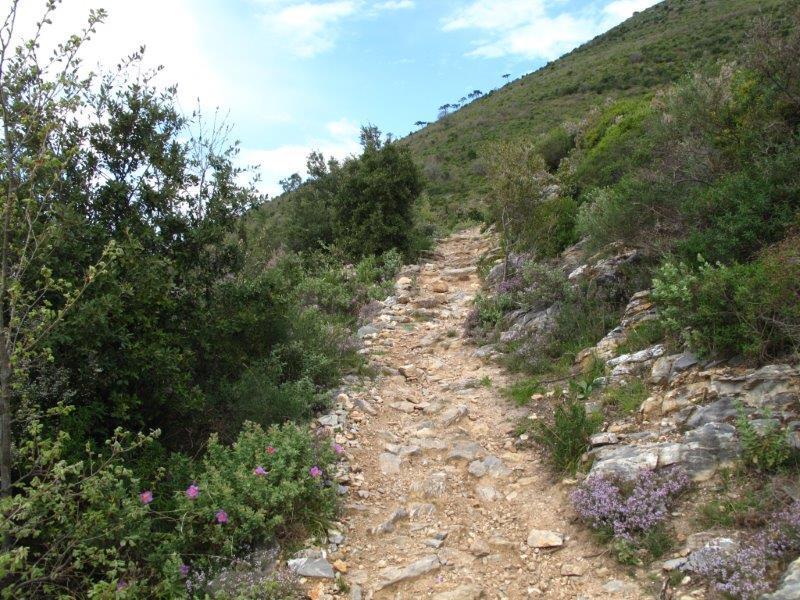 Sul sentiero del Pesalto