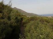 Il sentiero che contorna il Monte Pesalto