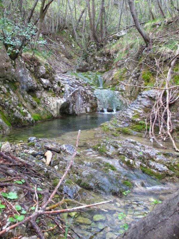 Lungo il Rio Torsero