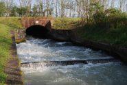 La presa sul Depretis del Navilotto di Saluggia