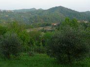 Ulivi sopra Vallegiolitti, Monte Croce in primo piano, Monte Favato e Bric delle Pietre in lontananza