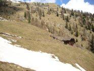 la punta sullo sfondo dall'alpe Piane