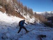 Ski sauvage!
