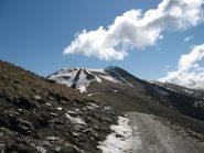 Monte Morfreid
