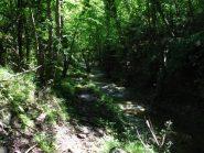Sentiero e rio corrono paralleli