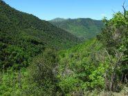 Salendo il panorama si apre sulla valle Auzza