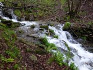 l'oggi impetuoso rio nivolaje