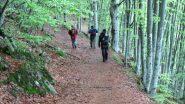 seguendo l'ottimo sentiero verso la Piana di San Lorenzo (19-5-2013)