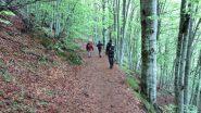 il primo tratto del sentiero nel bosco (19-5-2013)