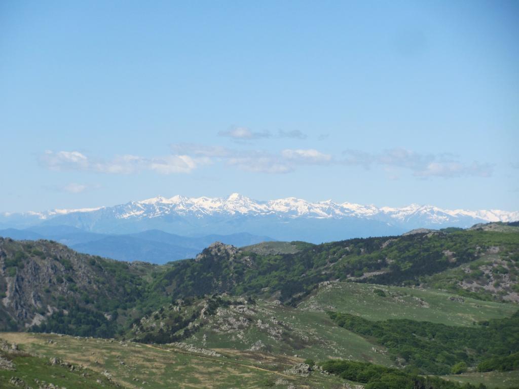 Le Alpi Liguri