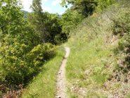 tratto del Sentier Valleen