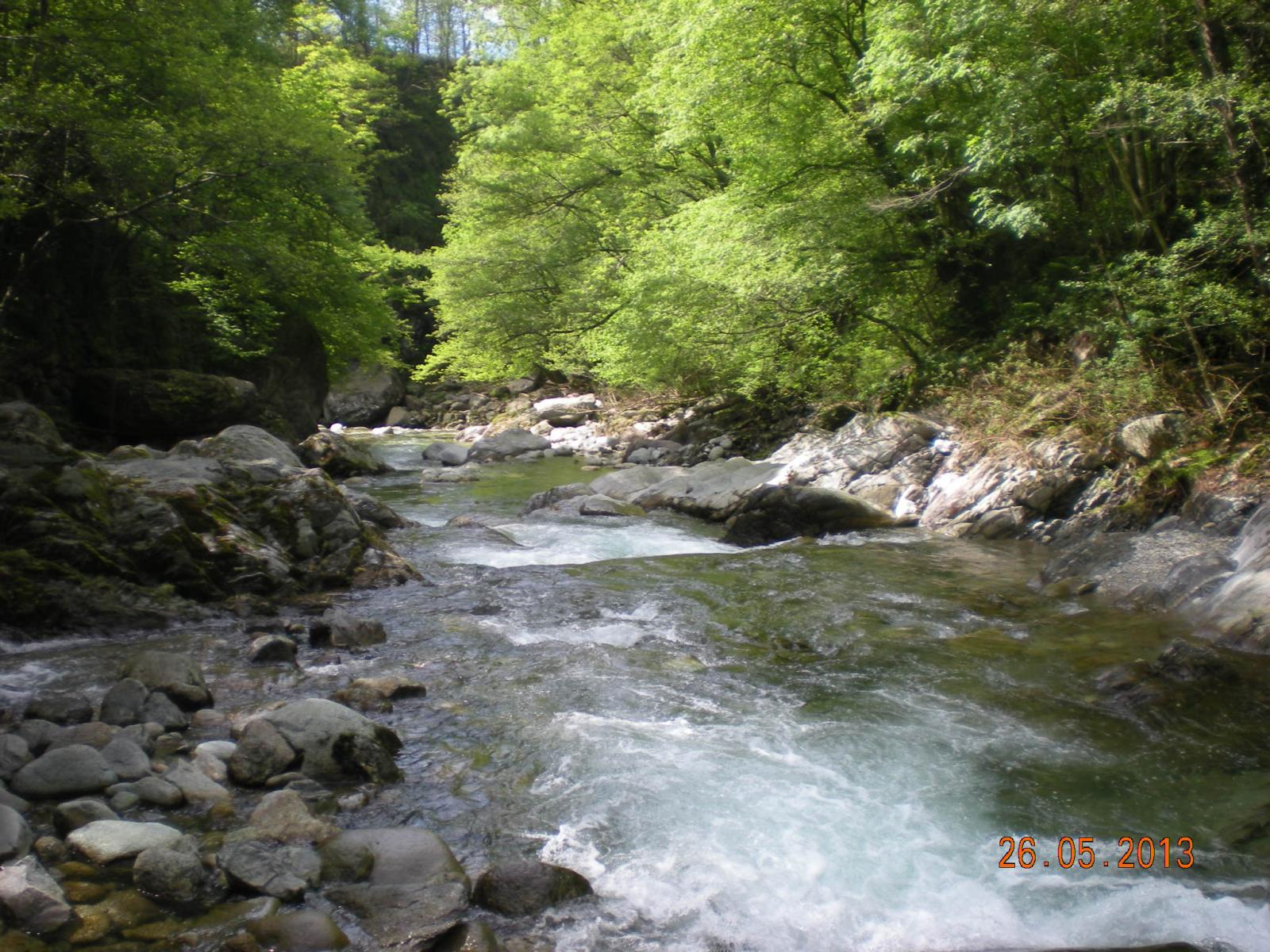 acqua limpida dell'Elvo