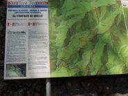 La descrizione del sentiero Frassati