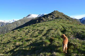 Rocca Turi con, sullo sfondo, le cime innevate di Vaccarezza e Angiolino