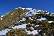 crinale di salita del Monte Vaccarezza