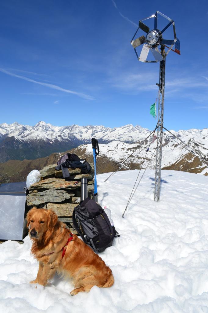 l'antiestetica vetta del Monte Vaccarezza
