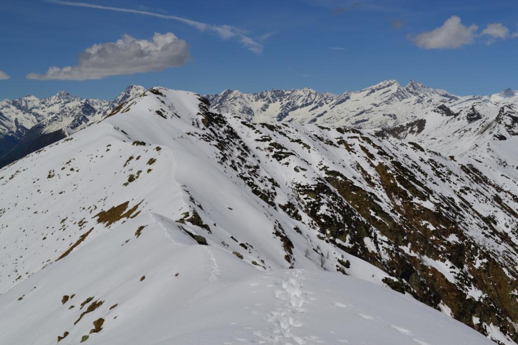 la cresta percorsa vista dalla Cima dell'Angiolino