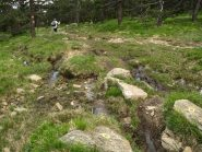 Tratto in discesa presso Bricco Damé: l'acqua non manca