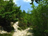Bivio dove il sentiero si immette sulla strada