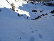 canale di salita, agevole in salita con sci a spalle