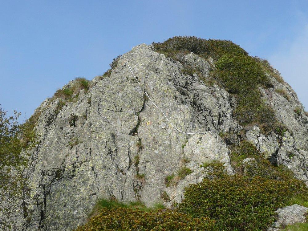 Argimonia (Rocca dell') Cresta Est 2013-06-08