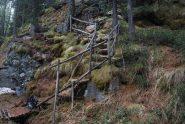 La comoda scalinata in un punto impervio sul sentiero 20b, per Frank un'occasione di riposo alla base