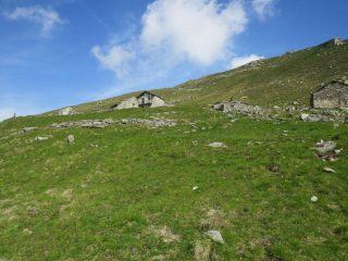 Arrivo all'Alpe Giua inferiore