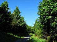 La strada dal colle S. Bernardo per il Bocchino delle Meravgiglie