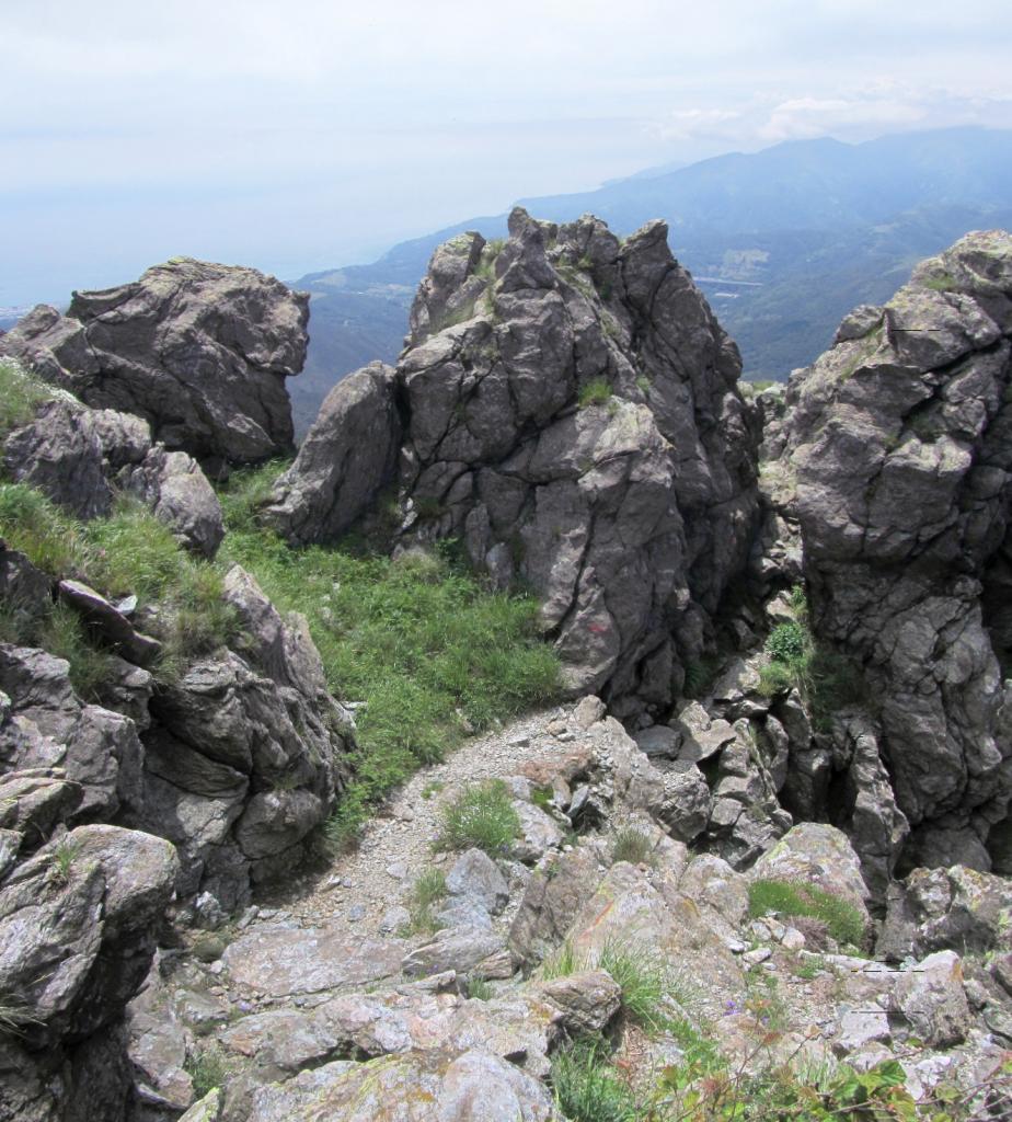 Martin (Punta) e Monte Penello da Pegli 2013-06-11