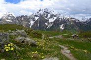 in discesa all'Alpe Berrier (2192 m)