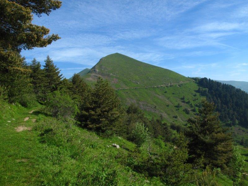 Monega (Monte) e Carmo dei Brocchi dal Passo della Teglia 2013-06-15