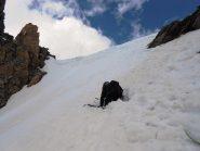 Marmottone al colletto SW del Pic