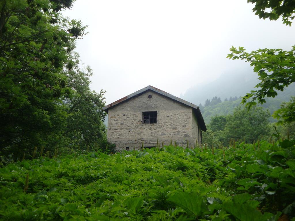 Pari (Gias Soprano del) dalla Certosa di Pesio, anello valloni del Pari e del Cavallo 2013-06-16