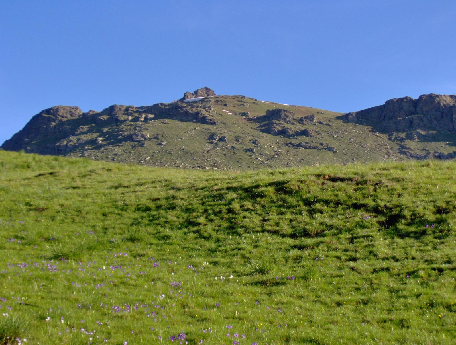 La bella sella erbosa prima delle rocce