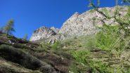 uscendo dal bosco verso il pianoro di quota 2500 m. nel Vallone Clausis (23-6-2013)