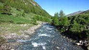 il torrente Aigue Agnelle visto dal ponticello in legno che lo attraversa (23-6-2013)