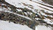 i miei amici in salita tra neve e pietrame a quota 2700 m. (23-6-2013)