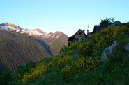 Alpe Briga (1370 m)