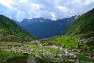 il pianoro dell'Alpe Asinello visto scendendo