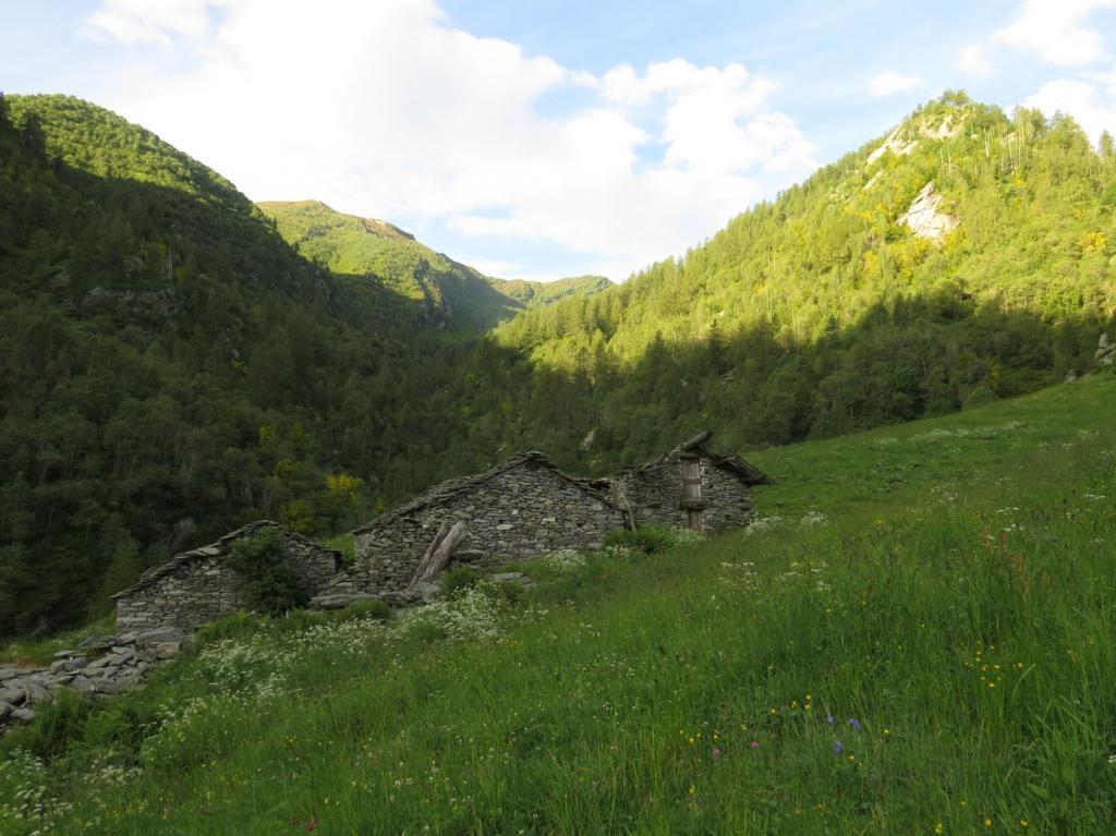 Alpe Carel