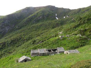 Alpe Leitosa con dorsalone del Monte Croass
