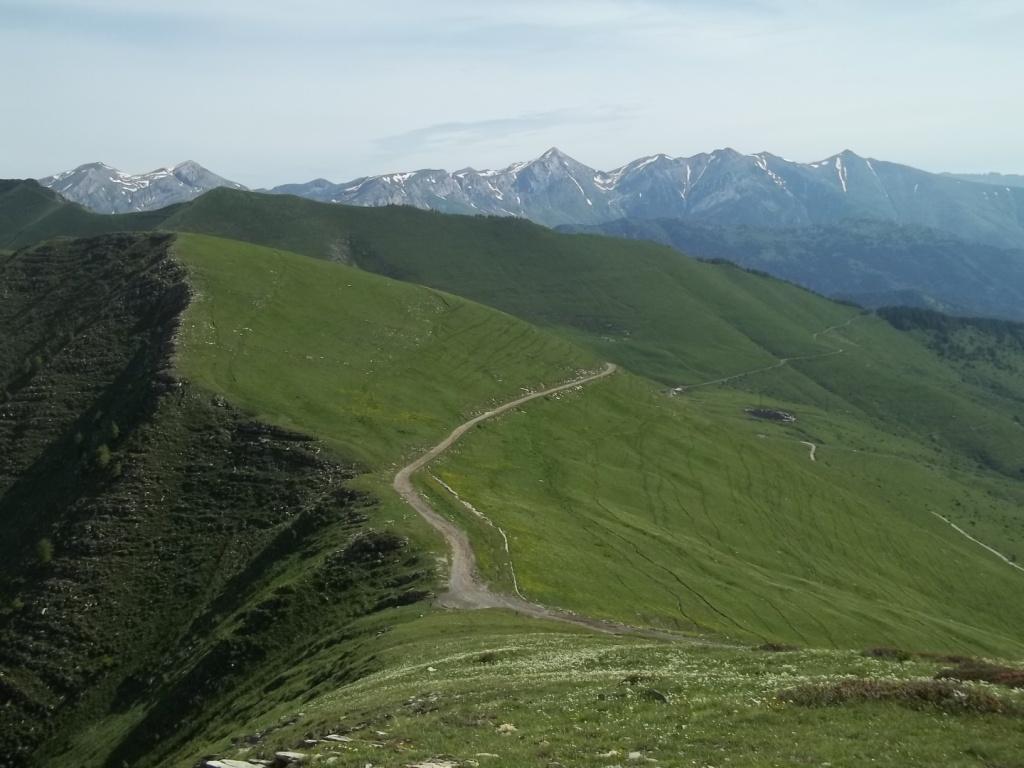 Saccarello (Monte) e Monte Frontè da Monesi, anello per la Cima Ventosa 2013-06-29