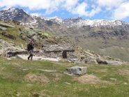 Blin all'alpe Loserai di Sopra