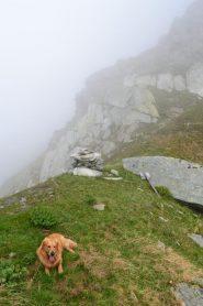 Colle Santanel (2464 m)