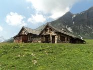 Alpe Ciamporino3