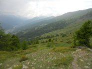 Verso l' Alpe Rocce...