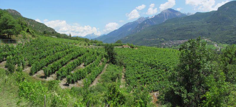 Via Francigena Tappa AO3: da Aosta a Chatillon 2013-07-11