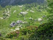 il bel pianoro dell'alpe Liliet