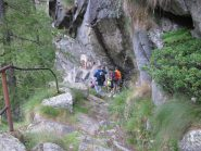 lungo il sentiero sopra Forzo